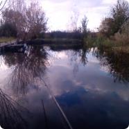 рыбалка на соседском пруду