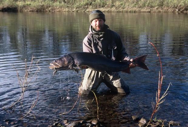 Рыболовный рай Запрещенные орудия и снасти, браконьерские Поэтому мы перечисляем только