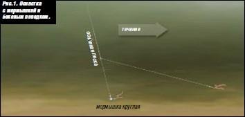 рыбалка на мормышку на течении видео