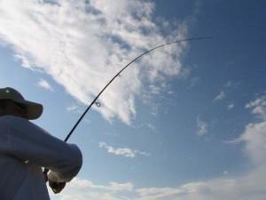 Как правильно подсекать рыбу