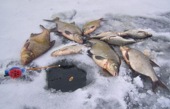 Зимняя рыбалка на озере