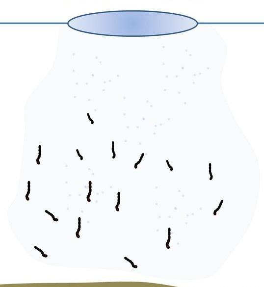 Новичкам: правила прикармливания рыбы зимой