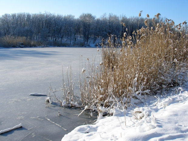 Что лед на речке нам готовит?
