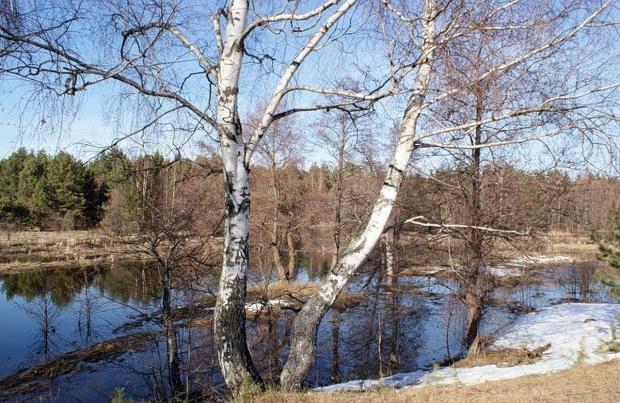 Несколько общих рекомендаций по рыбалке ранней весной