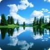 Синоптики в траве и в воде