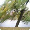 Влияние ветра на клев