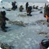 Снасти для ловли корюшки зимой