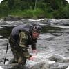 Необычная рыбалка, ловим рыбу руками