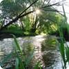 Река Вельга