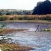 Озеро Гнилое
