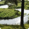 Река Селекша